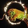 Цирки в Шигонах